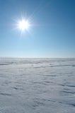 Sol iluminado planície da neve Imagens de Stock Royalty Free