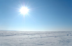 Sol iluminado planície da neve Imagem de Stock