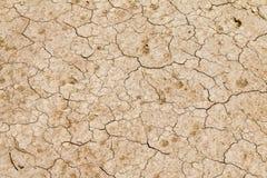 sol-knäckt jord Fotografering för Bildbyråer