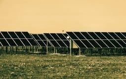 Sol- kraftverk Royaltyfria Bilder