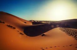 Sol ljusa Sahara Desert Royaltyfria Foton