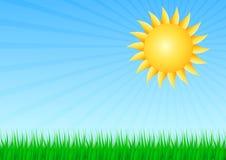 Sol med gräs Arkivbild