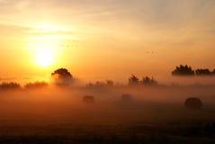 Sol naciente. Fotos de archivo libres de regalías