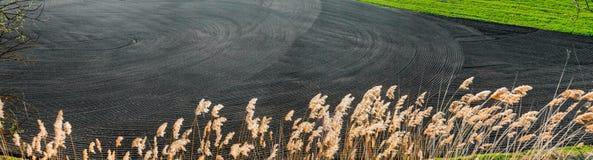 sol noir arable au gisement de ressort près de la canne photo libre de droits