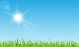 Sol och gräs Fotografering för Bildbyråer