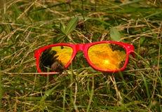 Sol- och molnreflexion i exponeringsglaset av röd solglasögon royaltyfri bild