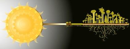 Sol och skog Arkivfoto