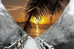 Sol och snö  Royaltyfria Bilder