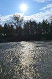 Sol ovanför Forest River fotografering för bildbyråer