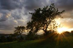 Sol poniente Fotografía de archivo libre de regalías