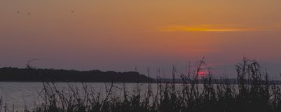 Sol poniente visto del reloj del pelícano en el SC de la isla de Seabrook Foto de archivo