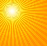 Sol quente do verão Fotos de Stock Royalty Free