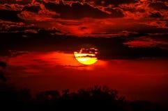 Sol rojo Fotos de archivo