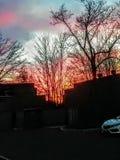 Sol rojo que va abajo foto de archivo libre de regalías
