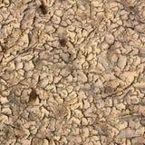 Sol sec et sable Photographie stock