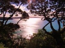 Sol sobre bahía de la ballena Fotografía de archivo libre de regalías