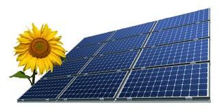 sol- solros för crystalline mono paneler royaltyfri fotografi