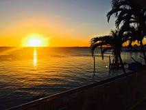 Sol som går ner i Key Biscayne Florida med främsta palmträd Royaltyfri Bild