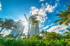 Sol som skiner över Miami Beach arkivbild