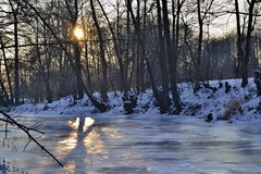 Sol som skiner mellan träd över den djupfrysta floden Arkivfoto