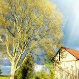 Sol som skiner på den gamla ladugården Arkivbilder