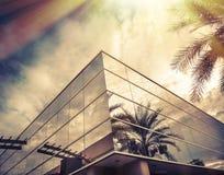 Sol som skiner på fönster av kontoret med palmträdet som reflekterar i exponeringsglas Arkivbilder