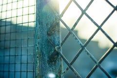 Sol som skiner till och med rostig metallskyddsgaller med målarfärgrest Royaltyfria Foton