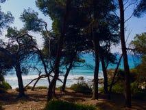 Sol & strand Arkivfoton