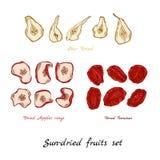 Sol-torkad frukt royaltyfri illustrationer
