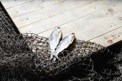 Sol torkade fisk och fisknät Arkivfoto