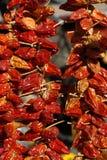 Sol-torkade peppar för röd chili som hänger yttersidan royaltyfria bilder