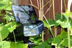Sol- trädgårds- lampa Arkivbild