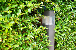 Sol- trädgårds- ljus laddas under dagen Royaltyfria Bilder