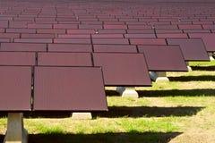 sol- växtström Arkivfoto