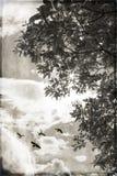 Sol y libertad Foto de archivo