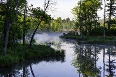 Sol y niebla de la mañana sobre un pantano en el Adirondacks Nueva York imágenes de archivo libres de regalías