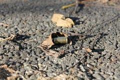 Sola cubierta de la bala Fotografía de archivo libre de regalías
