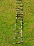 Sola escalera fija hecha a mano de madera en la tierra de la hierba Imagenes de archivo