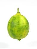 Sola fruta de la cal dominante fotos de archivo