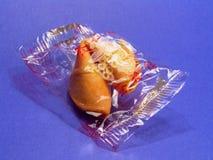 Sola galleta de fortuna Imagen de archivo libre de regalías