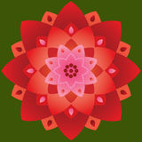 Sola mandala - Lotus Shape Red y colores rosados ilustración del vector