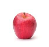 Sola manzana roja Imágenes de archivo libres de regalías