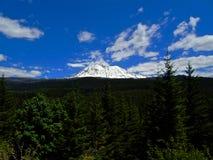 Sola montaña nevosa que pasa por alto un bosque fotos de archivo