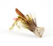 Sola mosca fly-fishing del saltamontes Imagenes de archivo