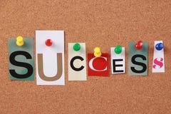 Sola palabra del éxito Foto de archivo