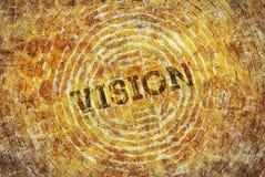 Sola palabra Vision Imagen de archivo libre de regalías