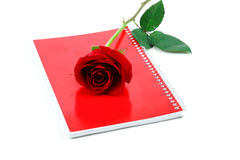 Sola rosa del rojo con el cuaderno rojo en el fondo blanco Imagen de archivo