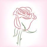 Sola Rose roja
