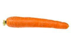 Sola zanahoria aislada Imagen de archivo libre de regalías