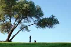 Solamente bajo el árbol grande Fotografía de archivo libre de regalías